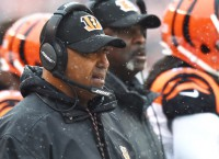 Lewis plans to coach Bengals in 2017