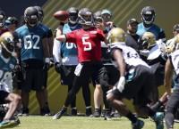 Optimism in force as Jaguars under new leadership