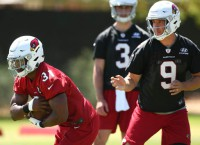 Report: Cardinals RB Johnson to sit out minicamp